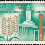 Wheat Revolution