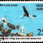 Bird Sanctuary, Bharatpur