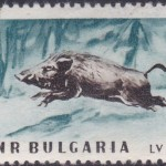 Animals of Bulgaria 1958