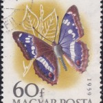 Butterflies of Hungary 1959