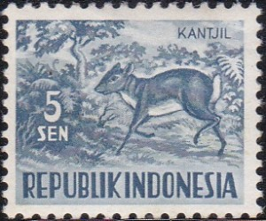 424 Lesser Malay chevrotain [Animals Stamp]