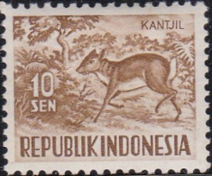 425 Lesser Malay chevrotain [Animals Stamp]