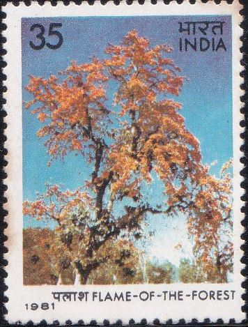 861 Flame of the Forest - Indian Flowering Tree [India Stamp 1981]