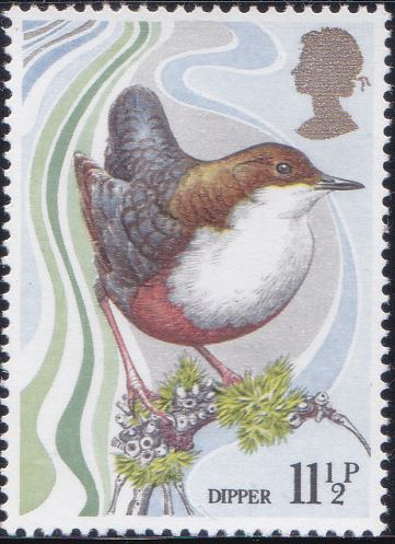 885 Dipper [England Stamp 1980]