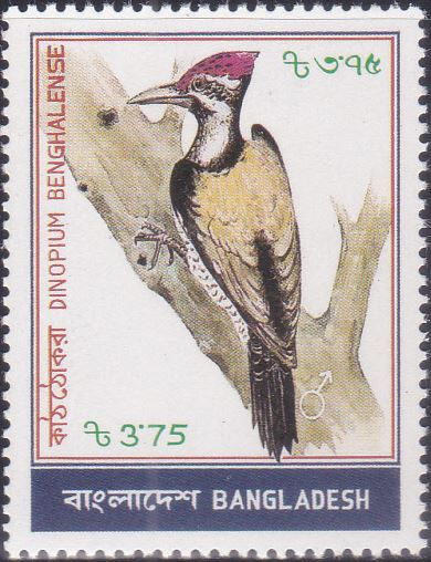 223 Woodpecker - Kaththokra Bird [Bangladesh Stamp 1983]
