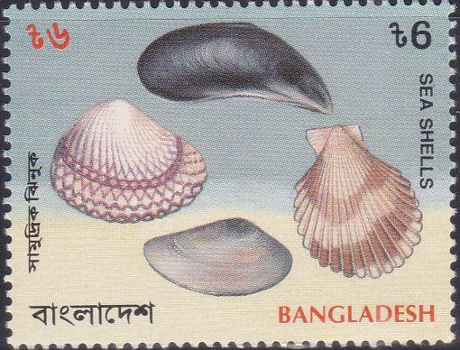 467 Scallop - Sea Shells [Bangladesh Stamp 1994]