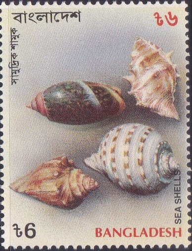 468 Spiral Shape - Sea Shells [Bangladesh Stamp 1994]