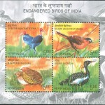 Endangered Birds of India 2006