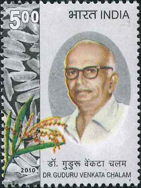 2594 Dr. Guduru Venkatachalam [India Stamp 2010]