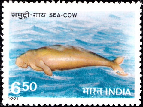 1270 Sea-Cow [India Stamp 1991]