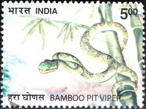 2010 Bamboo Pit Viper [India Stamp 2003]