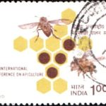 India on Second International Conference on Apiculture in Tropical Climates
