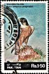 Pakistan Wildlife Stamp 1986
