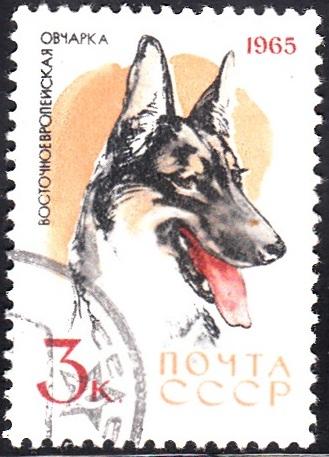2. Police Dog [Dog]