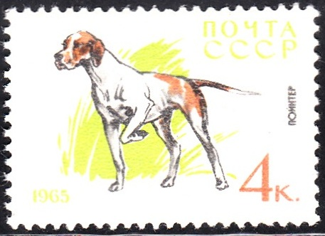 4. Pointer [Dog]