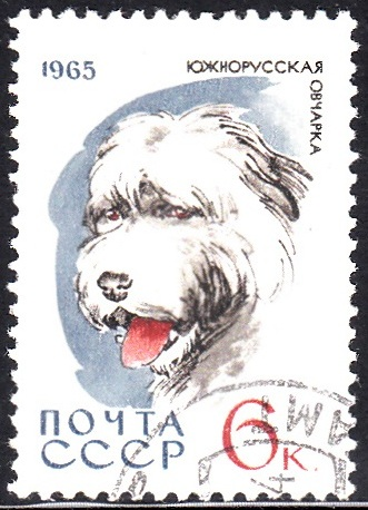 6. Sheepdog [Dog]