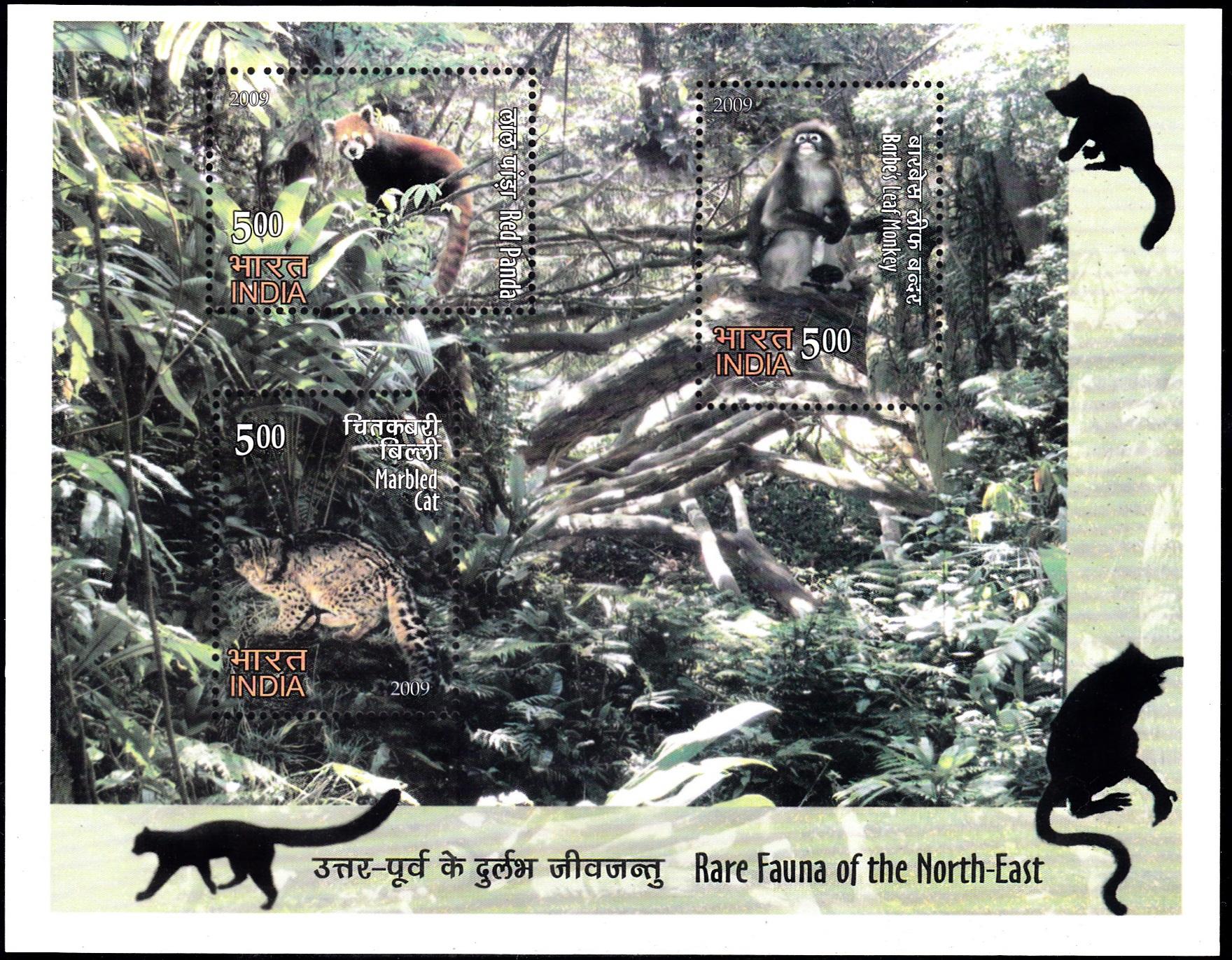 Red panda,Phayre's leaf monkey andMarbled cat