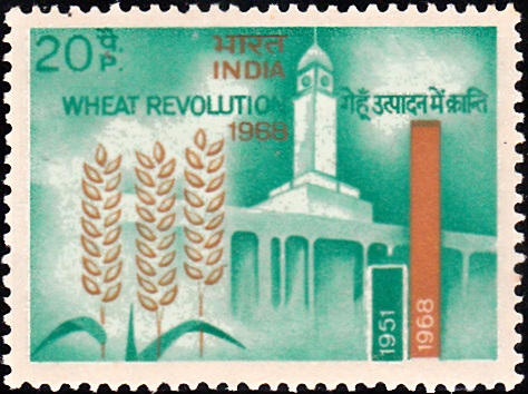 Wheat, Indian Agricultural Research Institute and Production Graph