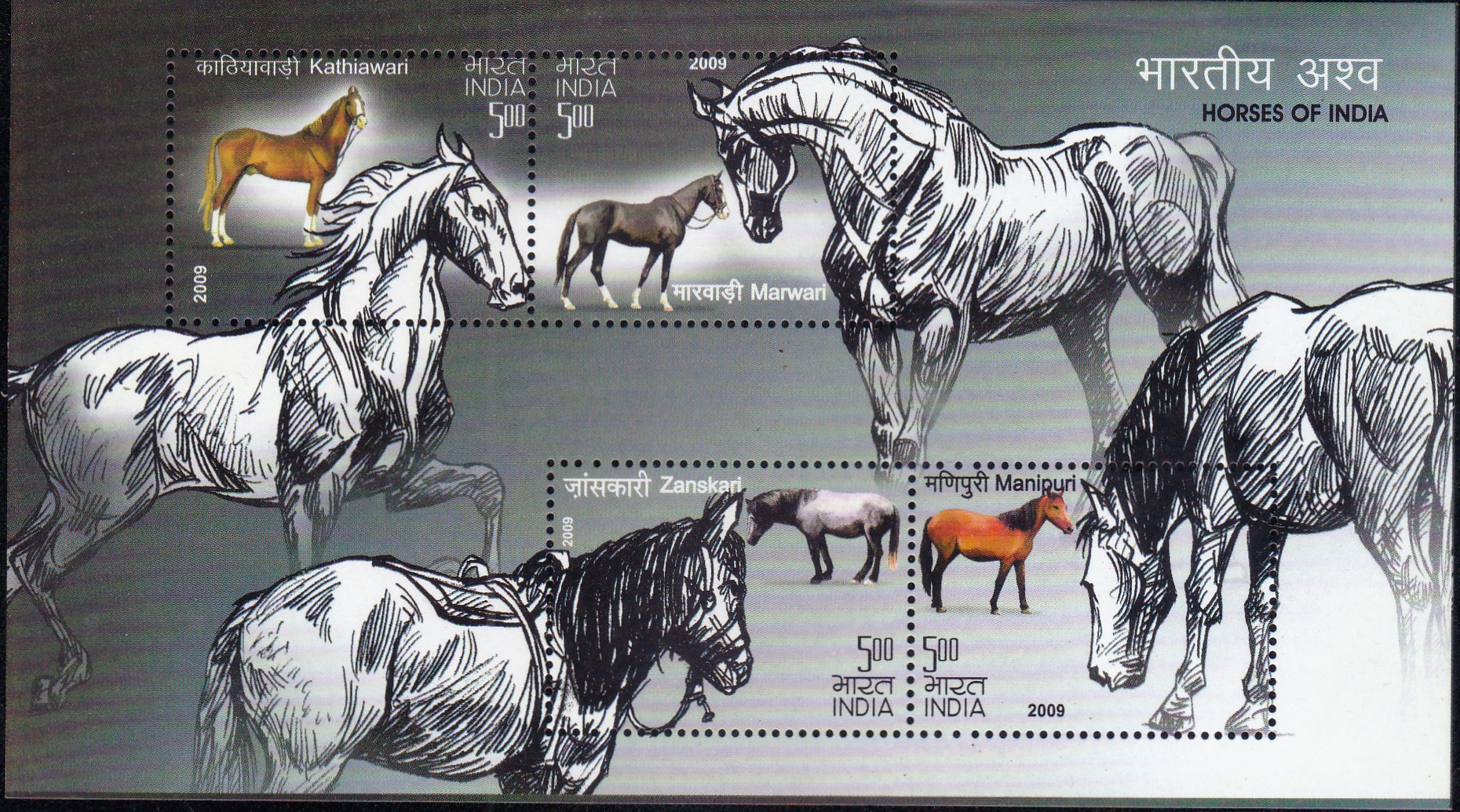 2530 Horses of lndia [Miniature Sheet]