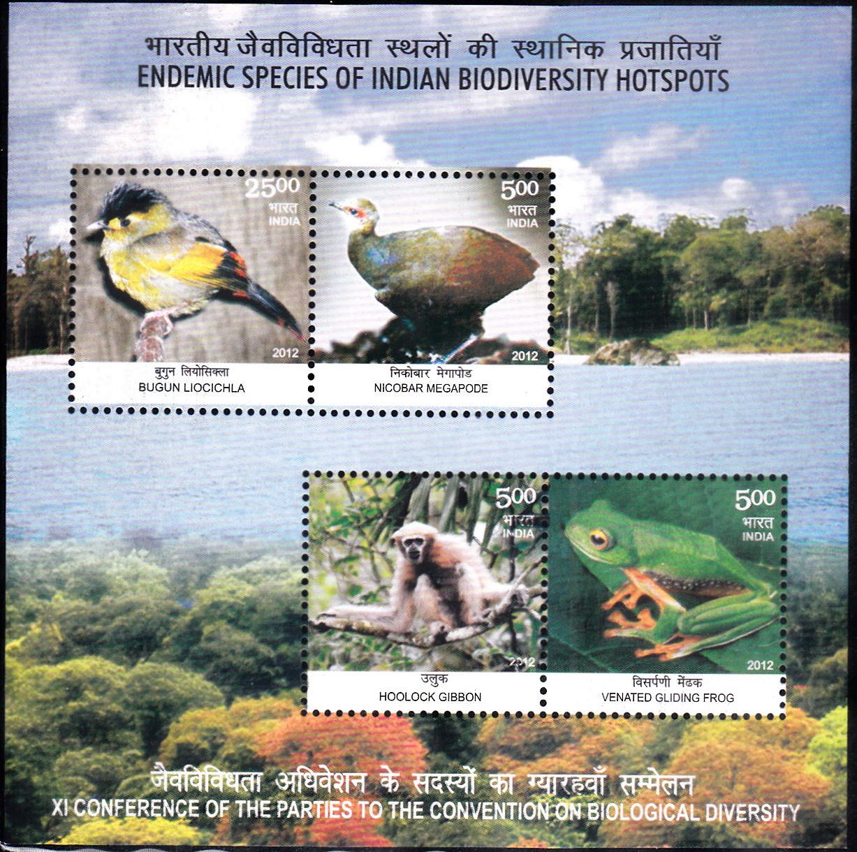 Bugun liocichla,Nicobar megapode,Hoolock gibbon andVenated gliding frog