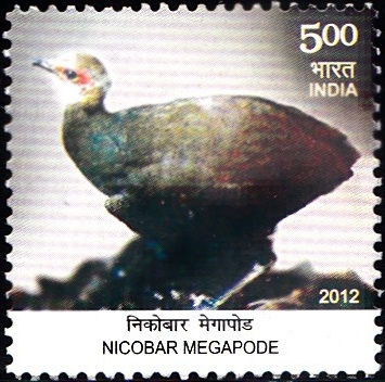 Megapodius nicobariensis, Nicobar Islands