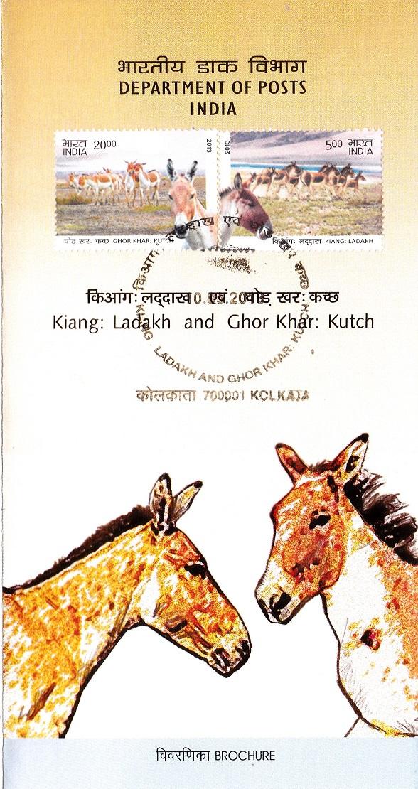 Tibetan and Indian Wild Ass (Ladakh and Little Rann of Kutch)