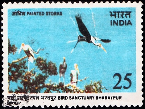 676 Bird Sanctuary Bharatpur