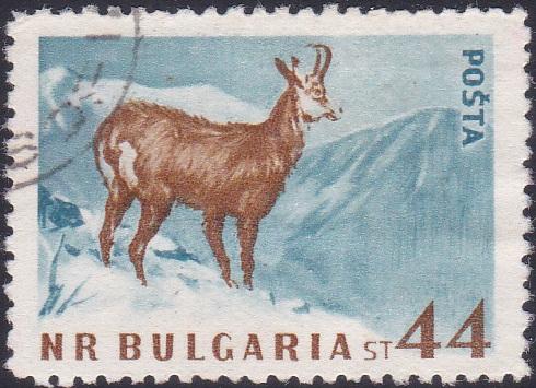 1007 Chamois [Bulgaria Stamp]