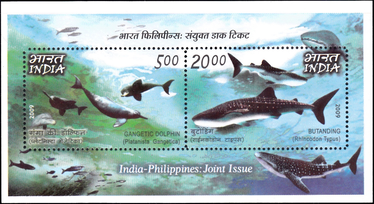 Whale Shark and South Asian River Dolphin
