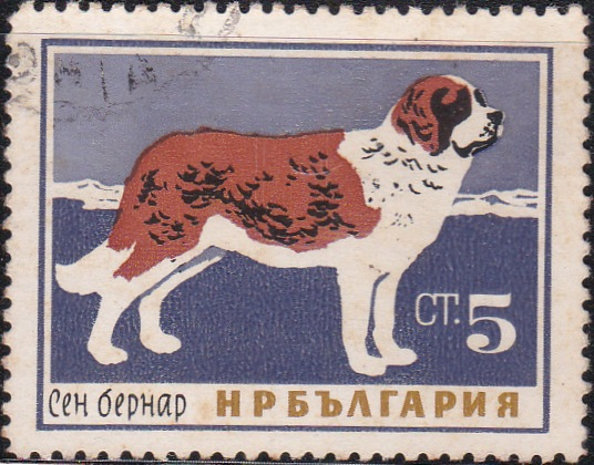 1352 St. Bernard [Dogs]