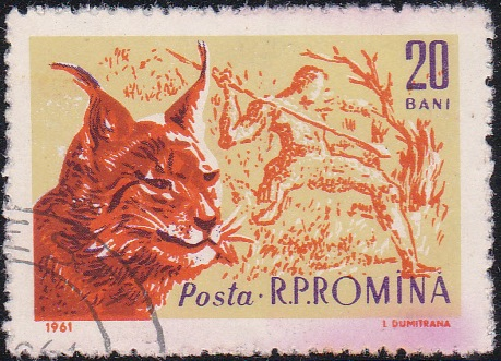 1426 Lynx and Prehistoric Hunter [Romania Stamp]