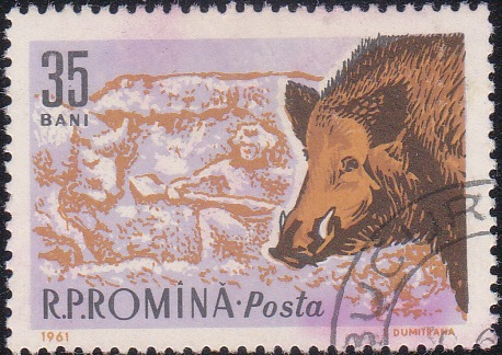 1427 Boar and Roman hunter [Romania Stamp]