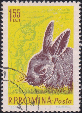 1432 Rabbit and hunter with dog [Romania Stamp]