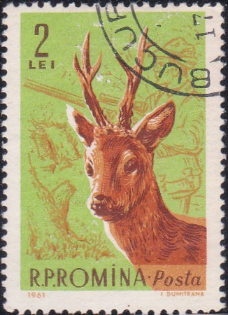 1434 Roebuck and hunter [Romania Stamp]