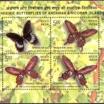 Endemic Butterflies of Andaman & Nicobar Islands