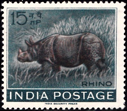 India's Wild Life : Rhino