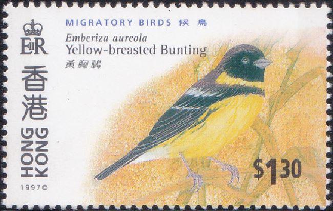 784 Yellow-breasted Bunting [Migratory Birds] Hong Kong Stamp 1997