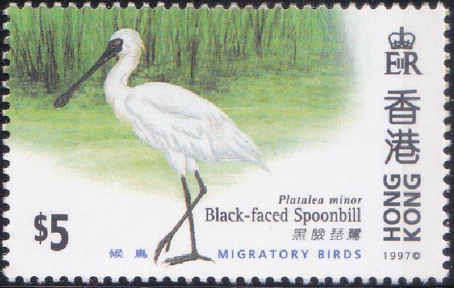 787 Black-faced Spoonbill [Migratory Birds] Hong Kong Stamp 1997