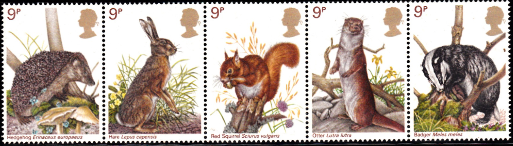 816-820 Wildlife Protection [England Setenant Stamp 1977]