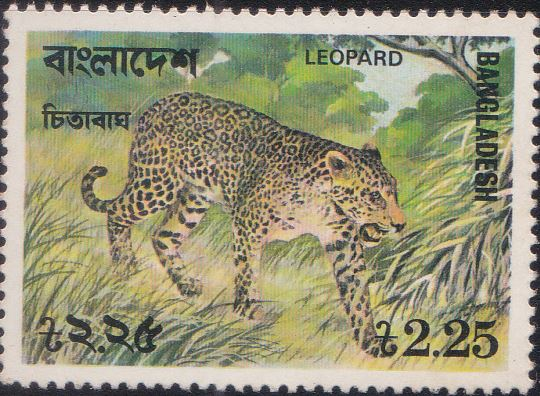 132 Leopard [Bangladesh Stamp 1977]