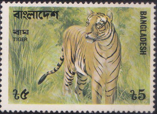 135 Bengal Tiger [Bangladesh Stamp 1977]
