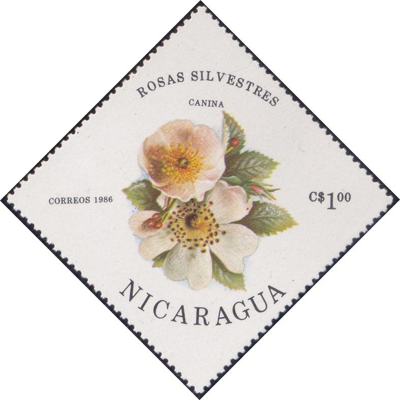 1495 Canina (Rosas Silvestres) [Nicaragua Diamond Stamp 1986]