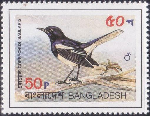 221 Magpie Robin - Doel Bird [Bangladesh Stamp 1983]