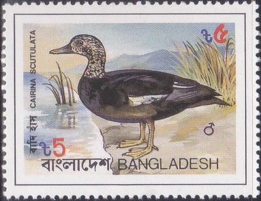 224 Wood Duck - Badi Hans Bird [Bangladesh Stamp 1983]