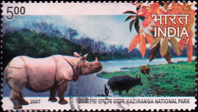 Kaziranga National Park, Assam