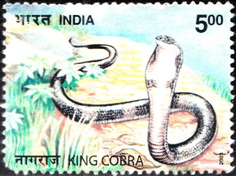 Indian Snakes 2003