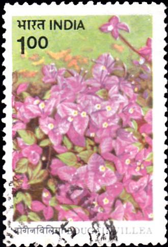 1008-h-b-singh-bougainvillea-india-stamp-1985