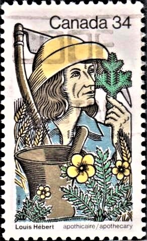 First Canadian Apothecary : First European to Farm in Canada (New France)