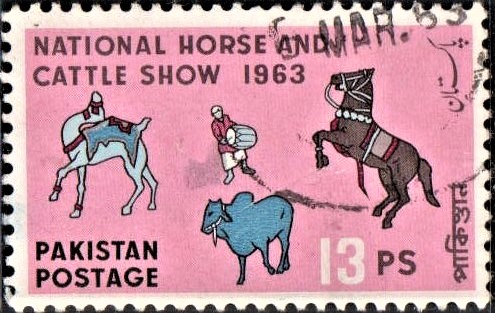 Lahore Hunt Horse Show