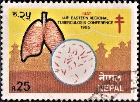 International Union Against Tuberculosis (IUAT)